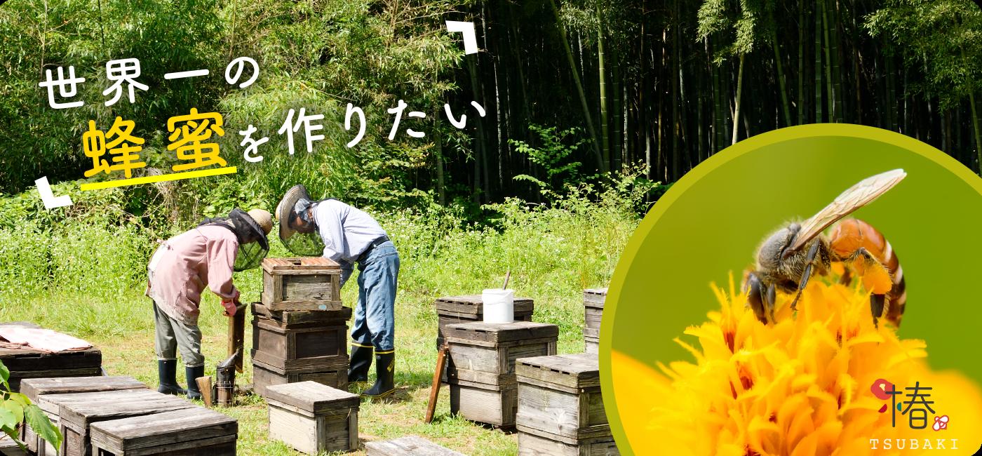 世界一の蜂蜜を作りたい
